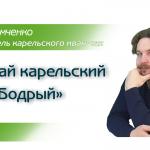 Иван-чай карельский «Бодрый»